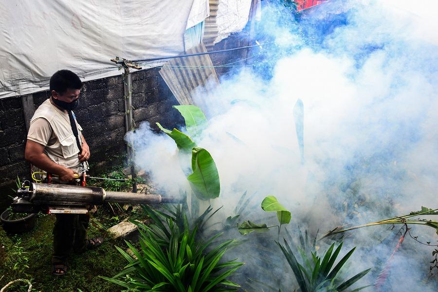 5分でわかるマラリア対策用農薬「DDT」使用が禁止されたのはなぜ?元塾 ...