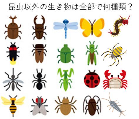 『昆虫』と『虫』は別の分類!
