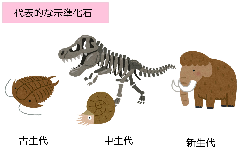 化石 示 相