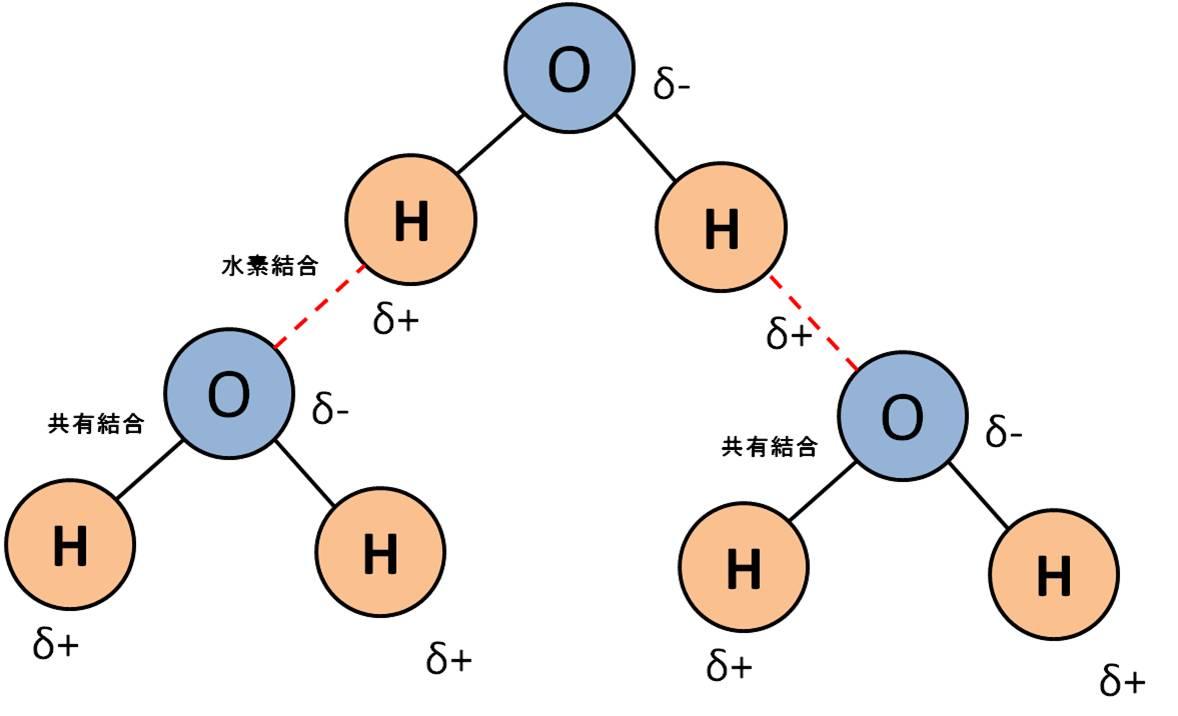 3.水素結合とは